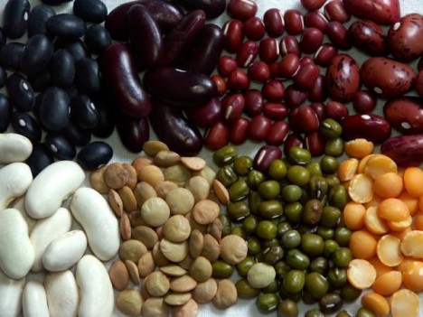 Dried Peas and Beans